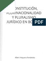 Constitucion_plurinacionalidad_y_plurali (1).pdf