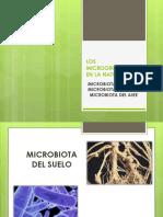 Microbiota Suelo, Agua y Aire.. (1)