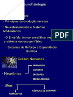 1 - Aula Neurofisiologia e potencial de Repouso - parte 1.ppt