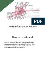 Komunikasi Antar Neuron (Neurotransmiter)