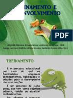 07- TREINAMENTO E DESENVOLVIMENTO.pdf