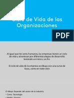 Ciclo de Vida de Las Organizaciones-2