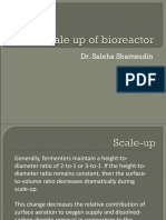 Escalamiento Bioreactor Scale-up