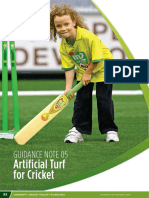 Section 2 Part 5 - Artificial Turf for Cricket