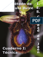 doscuadernosdeflautadepico-.pdf