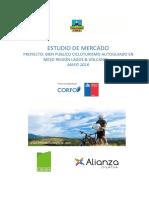 Estudio de Mercado Bp Cicloturismo Alianza Creativa