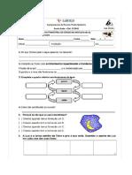 Fichas Preparação Sumativa Estudo Meio Páscoa