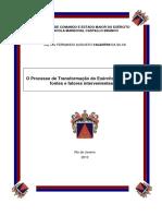 O Processo de Transformação Do Exército