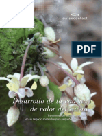 Folleto_Cacao.pdf