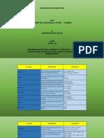 ACTIVIDAD 1 - DAINER BONILLA.pptx