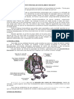 Mochilas Ideais PDF