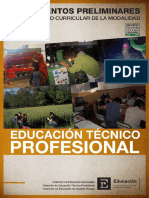 Lineamientos Preliminares-EducTecProf-Res 609-09.pdf