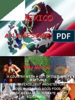 Exposicion Iid Mexico