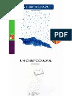 Charco Azul
