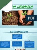 Materia Orgánica Equipo 1
