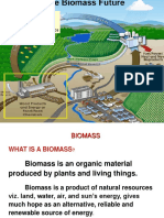 Biomass 2013