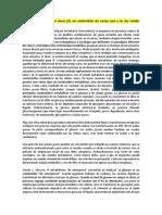 Dieta Cetogénica Contra El Cáncer II