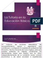 Tutoria Educacion Basica