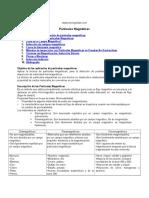 particulas-magneticas.doc