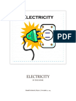 Electricity in the Home - Copy
