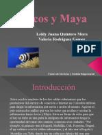 Presentacion Arcos y Maya