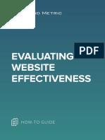 Evaluating Website Effectiveness