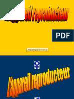 L'Appareil Reproducteur Humain