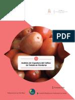 Análisis de coyuntura del cultivo de tomate