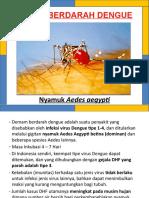 77432575 Materi Lembar Balik DBD Demam Berdarah Dengue