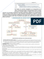 Biologia Terceromedio Guia de Estudio y Trabajo N4 (1)