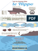 hippo infographic final