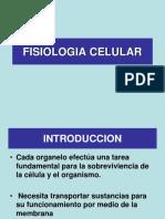 FISIOLOGIA CELULAR ALI.pps