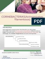 Corino Bacterias
