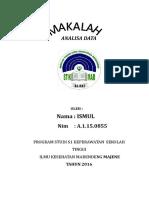 ANALISA DATA ISMUL.docx