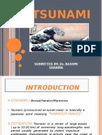 TSUNAMI presentation