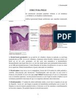1. Structura  pielii