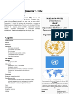 Organizația Națiunilor Unite