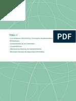 TEMA 11.pdf