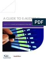 127 a Guide to e Auditing