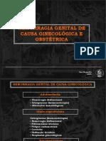 Hemorragia Genital de Causa Obstetrica e Ginecologica