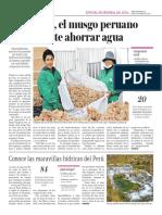 Inka Moss, El Musgo Peruano Que Permite Ahorrar Agua