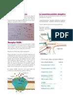 ResumenSolemne3Psicobiologia