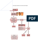 Algoritma pada pasien IMS.docx