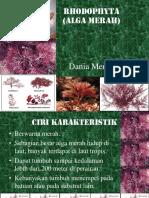 Presentasi Rhodophyta Dania