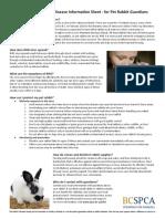 Rabbit Hemorrhagic Disease Information Sheet for Rabbit Guardians