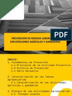 Prevencion de Riesgos Laborales en Explotaciones Agricolas y Ganaderas