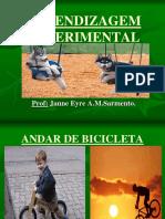 APRENDIZAGEM EXPERIMENTAL-novo.pdf