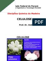 Celulose
