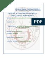 217208570-1-Informe-de-Lodos-Densidad.docx