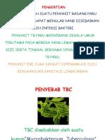 177696200 Lembar Balik TB